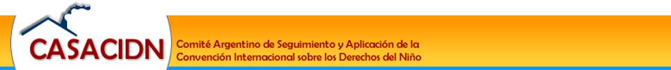Comité Argentino de Seguimiento y Aplicación de la Convención Internacional sobre los Derechos del Niño